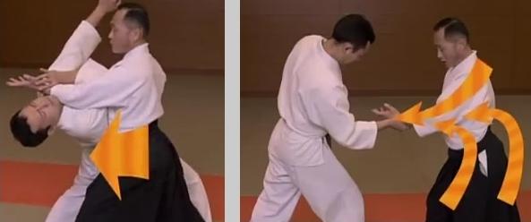 Yoshinkan Aikido Ryu, 2013