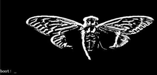 cicada-os-splash